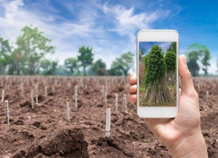 Teknolojinin Tarımdaki Yeri